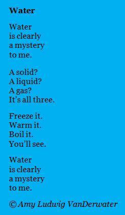 water conservation essays